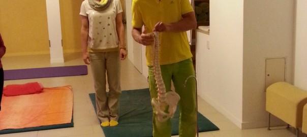 Gehen, Stehen und Sitzen und die Auswirkungen auf unsere Wirbelsäule